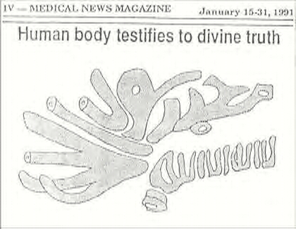 The human body testifies to the shahadah!